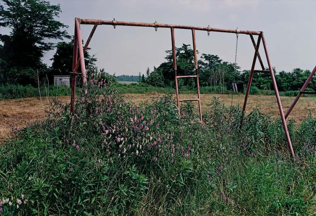 balançoire dans un champs