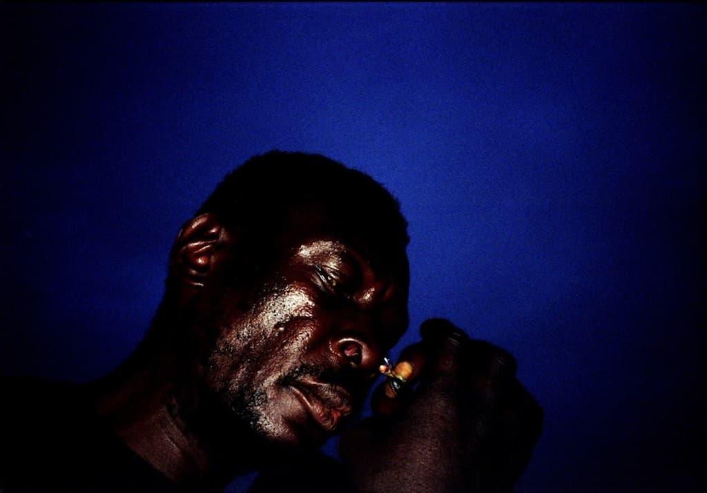 Photo de Khalik Allah : Frenchie dans un clair obscur et un ciel bleu pétant